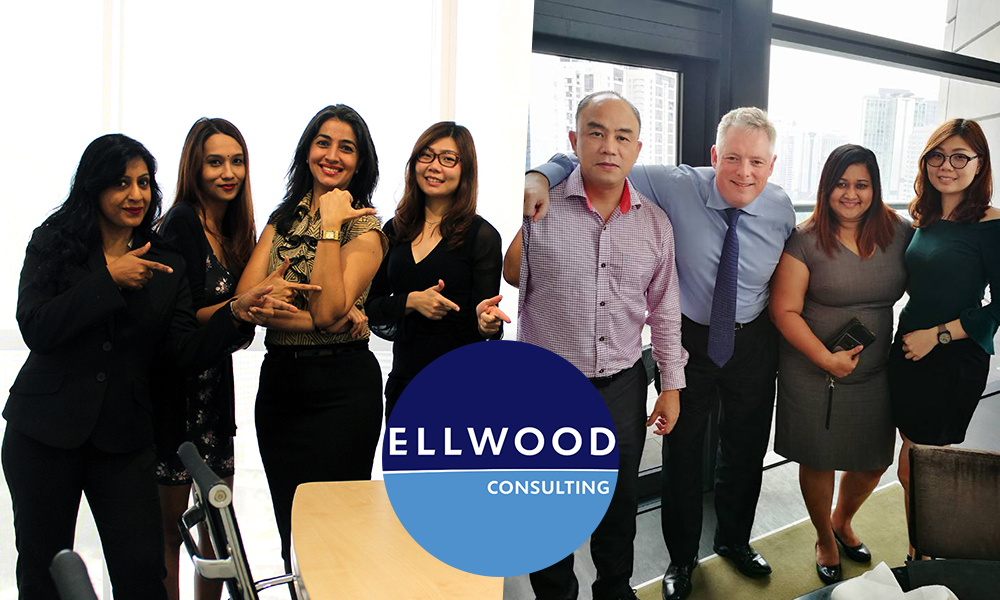 ellwood consulting
